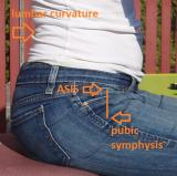 pelvic alignment and abdominal muscles
